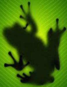 FrogWatchWatermark