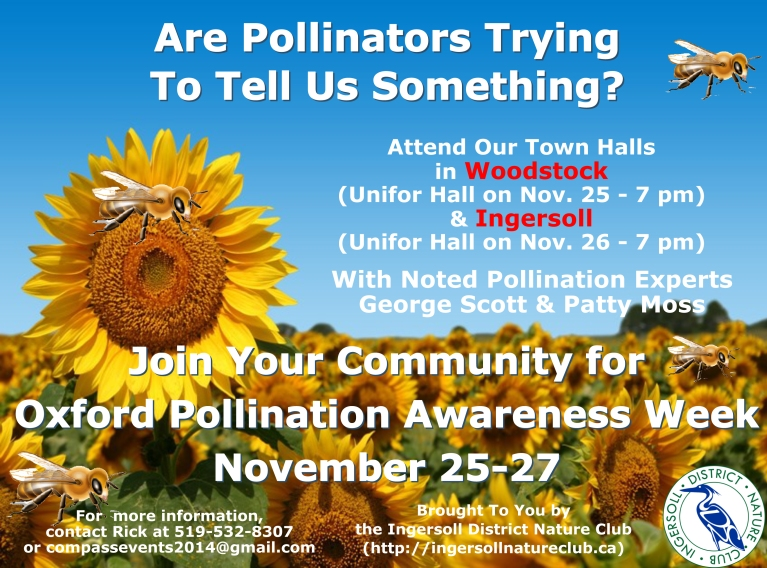 2014 11 04 Pollination Awareness Flyer Ver2