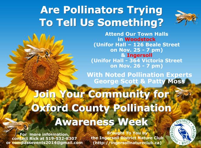 2014 11 10 Pollination Awareness Flyer Ver2