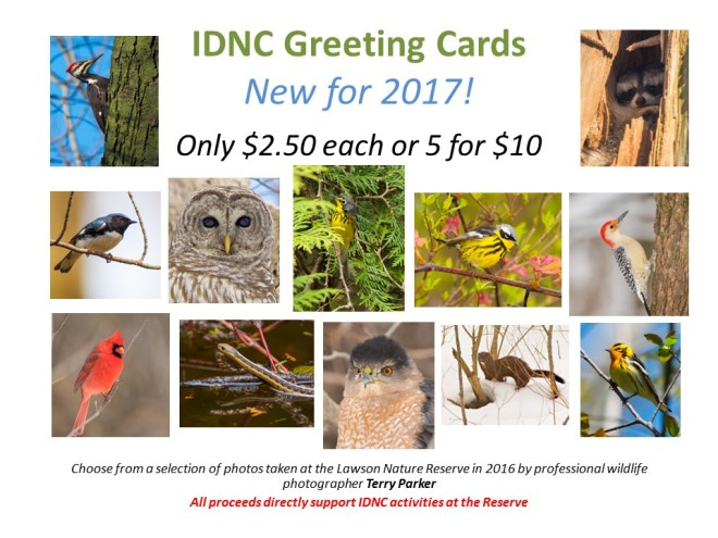 idnc-greeting-cards-2017