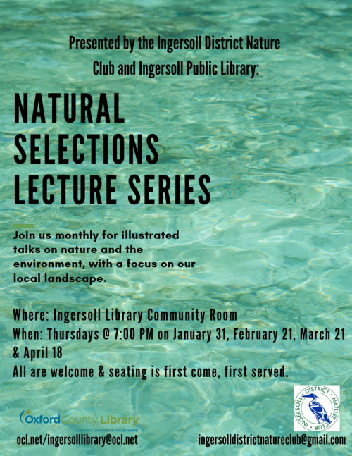natural selections lecture series poster